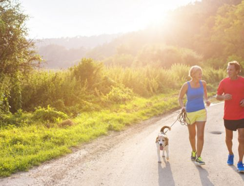 10 Tips For Staying Active
